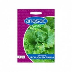 Semillas Lechuga Escarola 5 grs. ANASAC