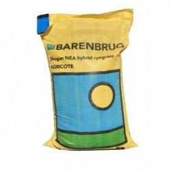 Semilla Ballica Shogun Desinfectada Barenbrug Saco 25 kg