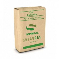 Carbonato Calcio Saco 25 kg